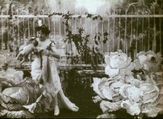 1898_astronomers_dream_016_alice_guy_blache_cabbage_fairy